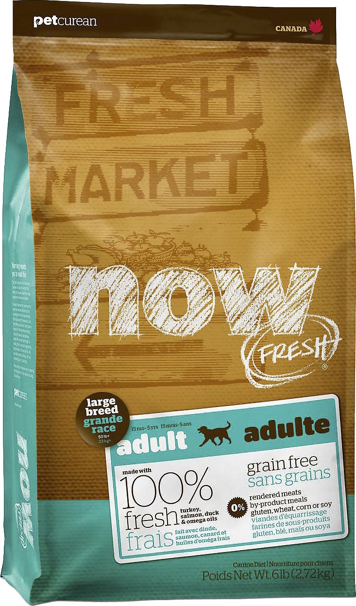 Now Fresh Grain Free Large Breed Adult Recipe Dry Dog Food