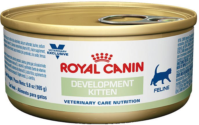 Royal Canin Canned Kitten Food Reviews