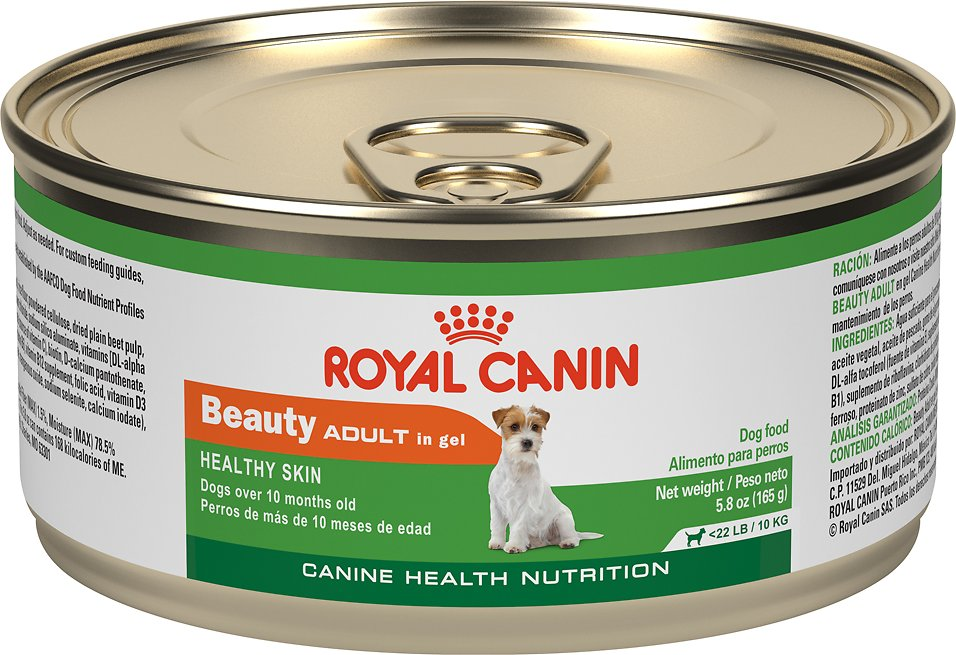 Royal Canin Canned Senior Cat Food