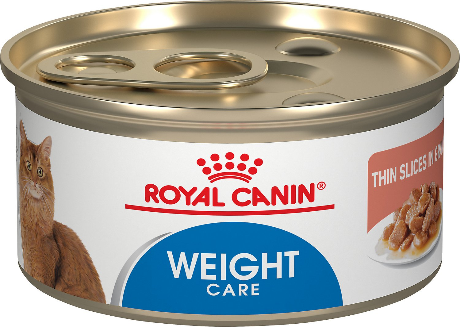 Royal Canin Light Wet Cat Food