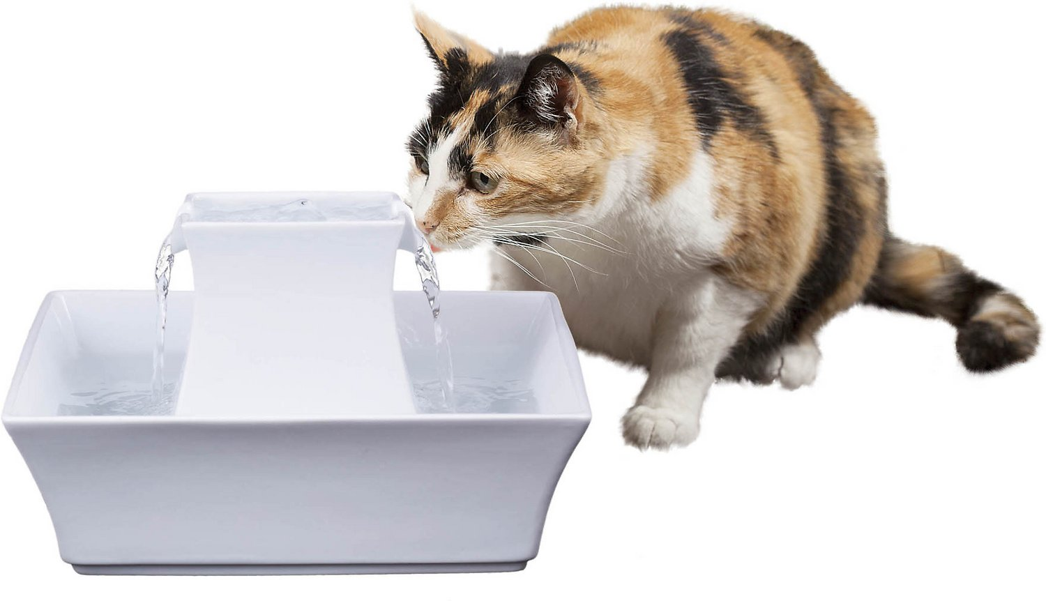 drinkwell pet fountain instructions