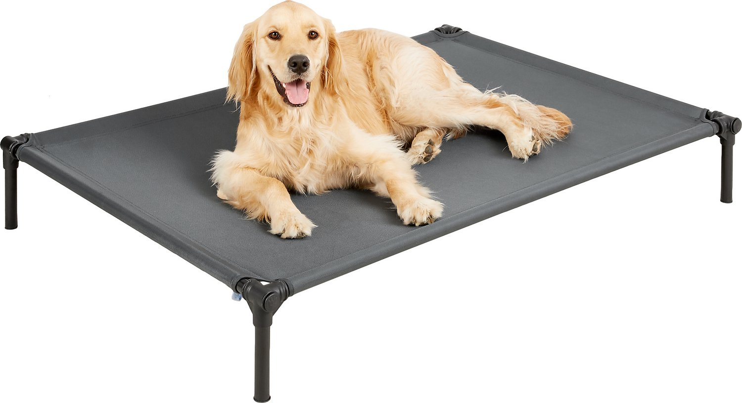 Starmark Dog Zone Pro Training Dog Bed