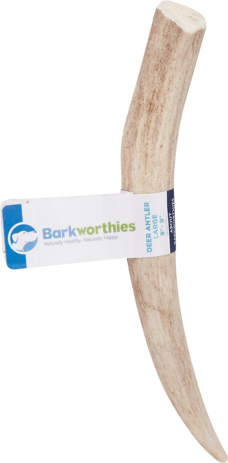 barkworthies deer antler dog chews 8 9 inches. Black Bedroom Furniture Sets. Home Design Ideas