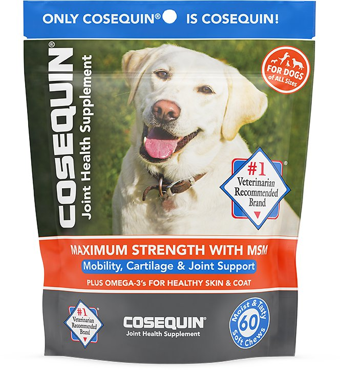 nutramax cosequin maximum strength ds plus msm soft chews joint health dog supplement 60. Black Bedroom Furniture Sets. Home Design Ideas
