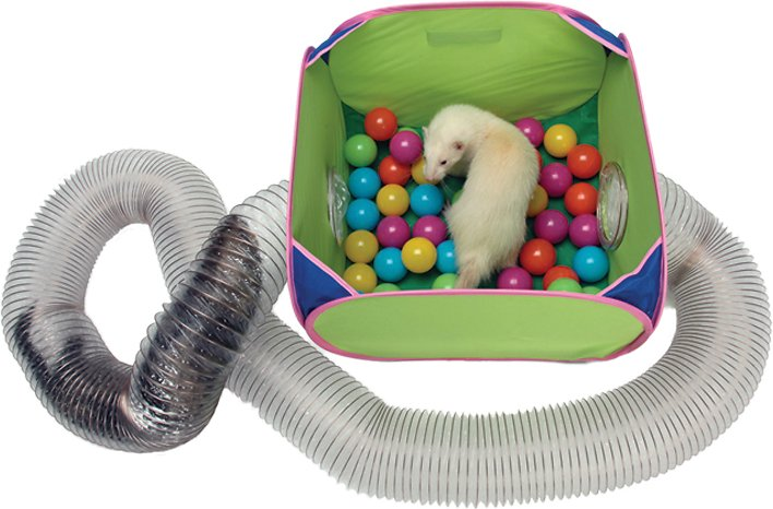 MARSHALL Pop-N-Play Ferret Ball Pit Toy, 10.5-in - Chewy.com