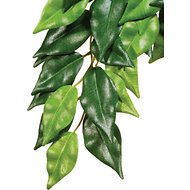 Exo Terra Ficus Silk Plant, Medium