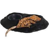 Pangea Ultimate Gecko Ledge Reptile Bowl, Black