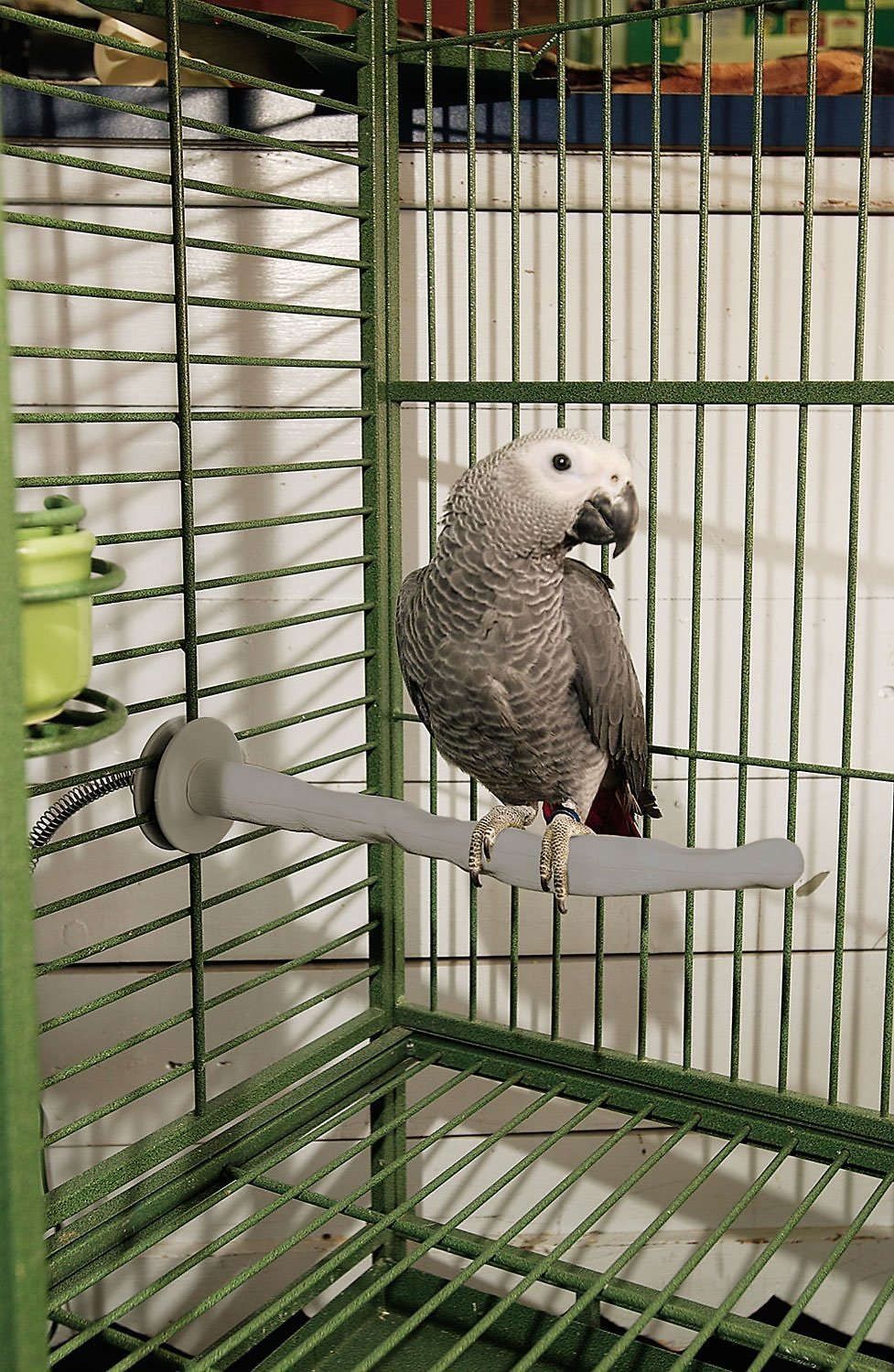 K Amp H Pet Products Bird Thermo Perch Large Chewy Com