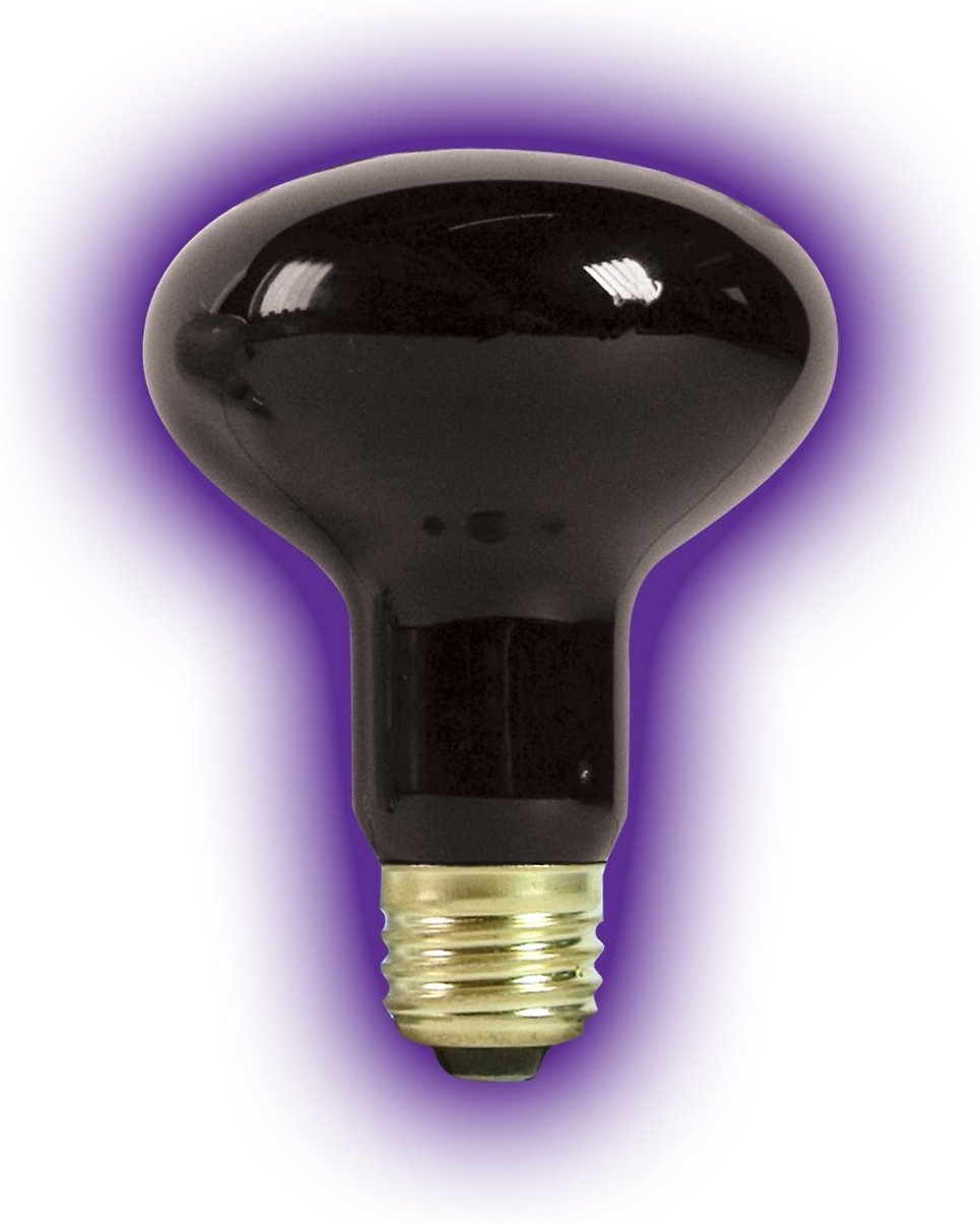 Zilla Night Black Heat Incandescent Spot Reptile Bulb 150 Watt Chewy Com