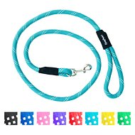 ZippyPaws Climbers Mountain Original Climbing Rope Dog Leash, Teal, 6-ft