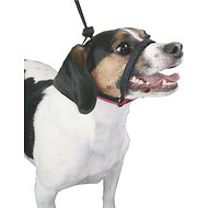 Yup! Head Control Dog Halter, Black, Medium