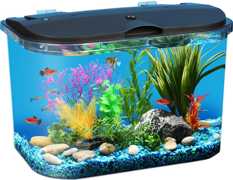 Koller products tropical panaview aquarium starter kit 5 for 5 gallon fish tanks