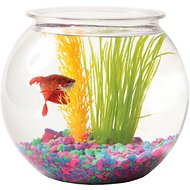 Aqua Accents Sphere Plastic Fish Bowl, 1-gallon