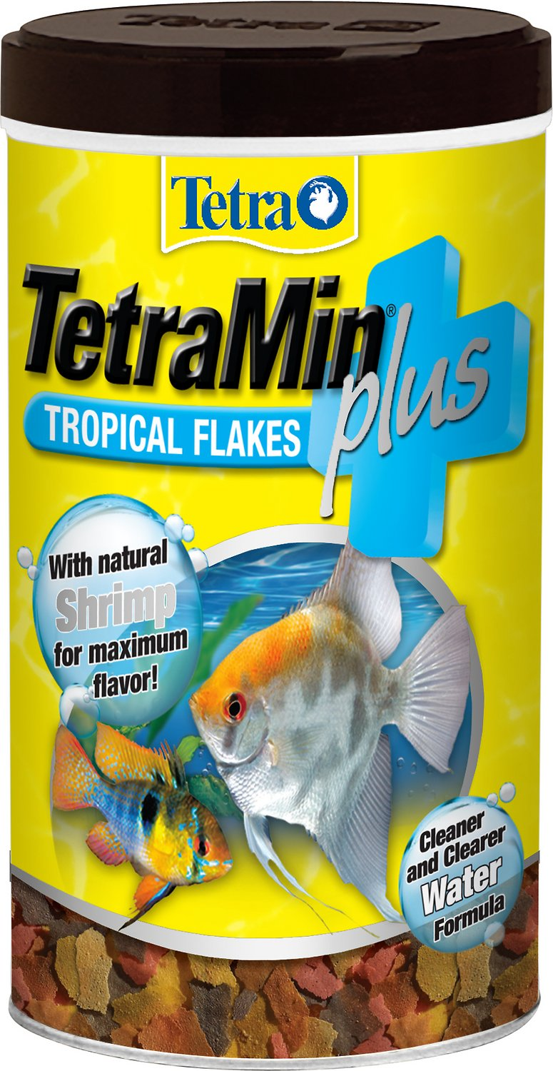 Best Food For Guppies and Platies 1