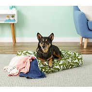Molly Mutt Amarillo by Morning Square Dog Duvet Cover, Small