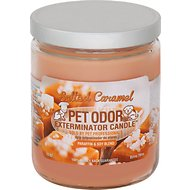 Pet Odor Exterminator Salted Caramel Deodorizing Candle, 13-oz jar