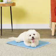 The Green Pet Shop Self-Cooling Pet Pad Cover, Small