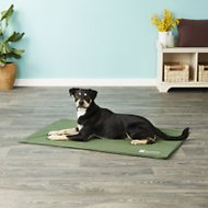 The Green Pet Shop Self-Cooling Pet Pad Cover, X-Large