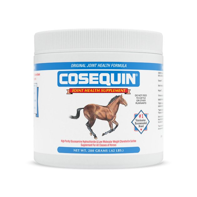 nutramax cosequin concentrated powder joint health horse supplement 62 lb tub. Black Bedroom Furniture Sets. Home Design Ideas