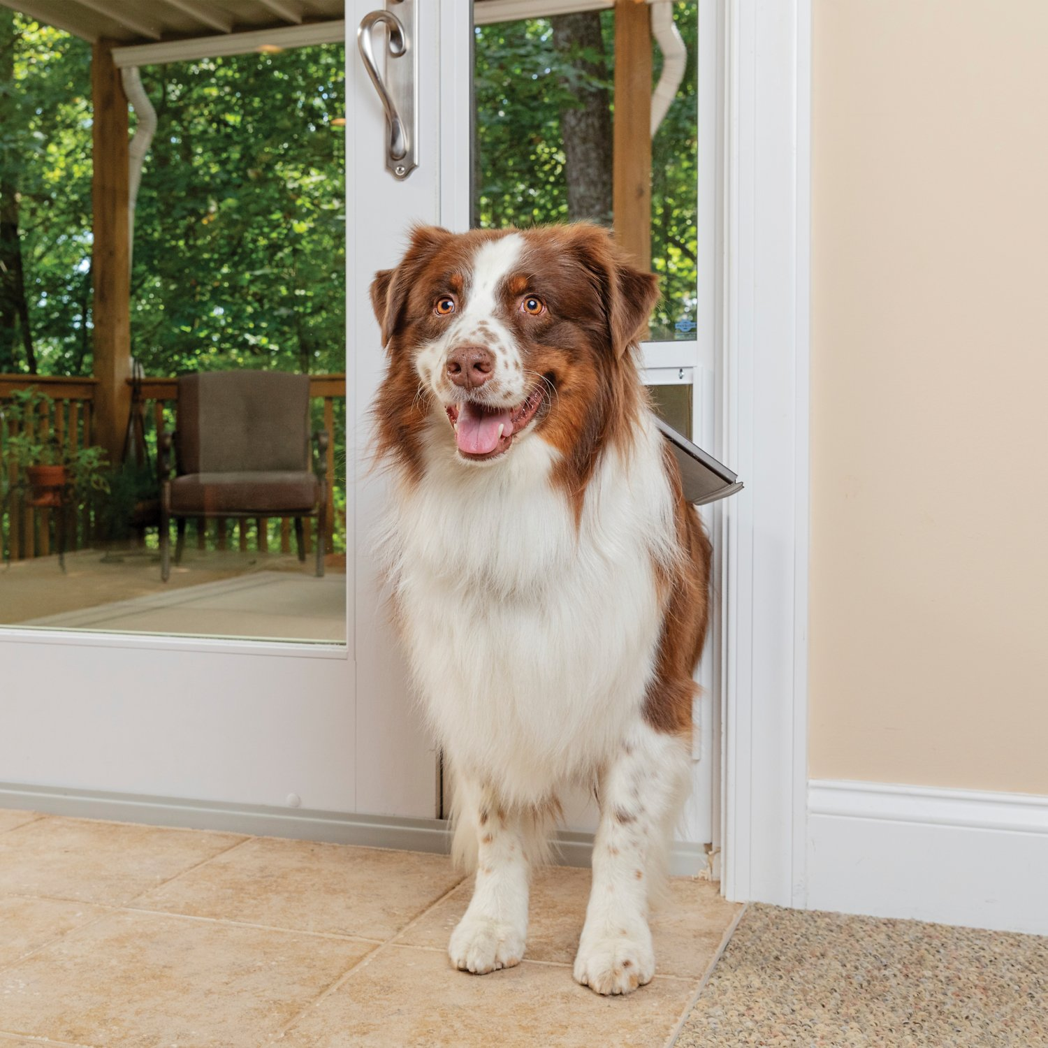 video  sc 1 st  Chewy.com & PetSafe Freedom Patio Pet Doors for Sliding Doors 81-in Large ...