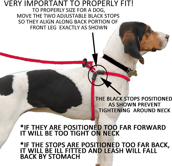 Chafing Back Dog Harness Find Wiring Diagram