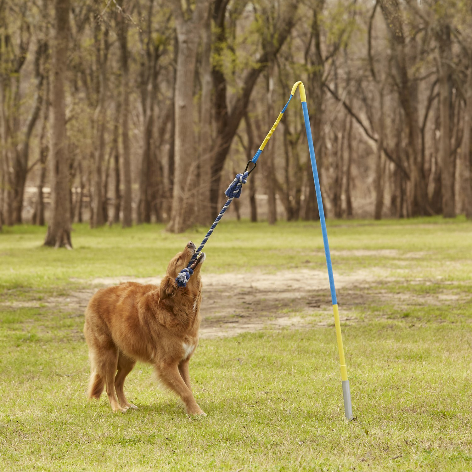 Tether Tug Outdoor Dog Toy, Medium 35 - 70 lbs - Chewy.com