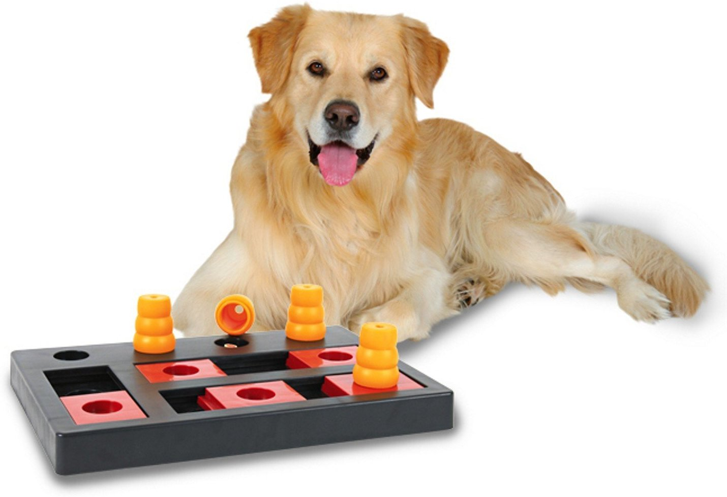 Chess Dog Toy Puzzle