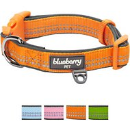 Blueberry Pet 3M Reflective Spring Pastel Dog Collar, Large, Pastel Orange