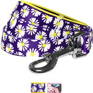 Blueberry Pet Floral Prints Dog Leash, Daisy, 5-ft, 3/4-in