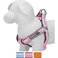 Blueberry Pet 3M Reflective Spring Pastel Dog Harness, Medium/Large, Baby Pink