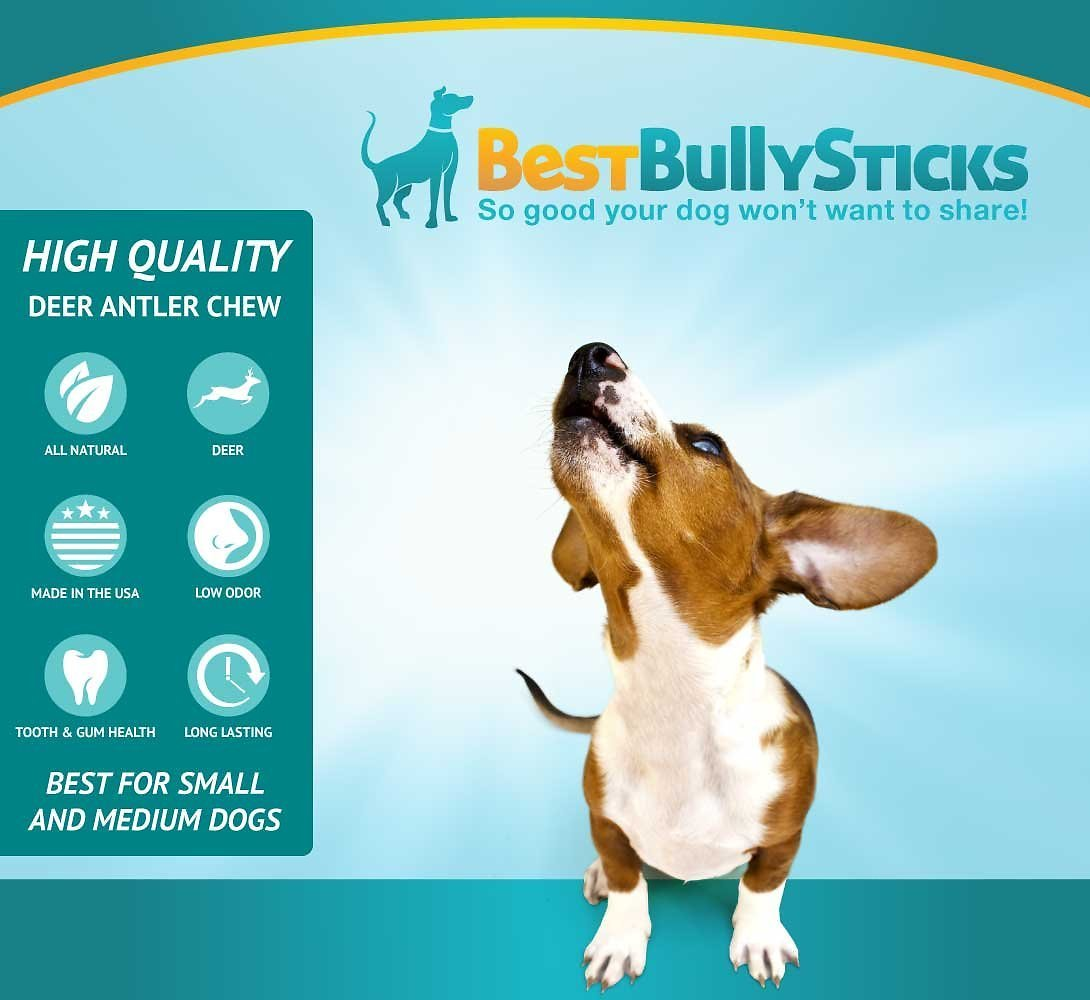 best bully sticks deer antlers dog chews 1 lb bag. Black Bedroom Furniture Sets. Home Design Ideas