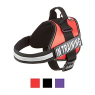 Doggie Stylz In Training Dog Harness, Large, Red