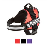 Doggie Stylz In Training Dog Harness, X-Large, Red
