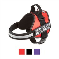 Doggie Stylz Service Dog In Training Harness, Large, Red