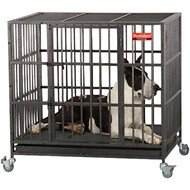 ProSelect Empire Dog Cage, Large
