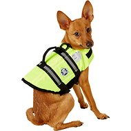 Paws Aboard Yellow Dog Life Jacket, X-Small