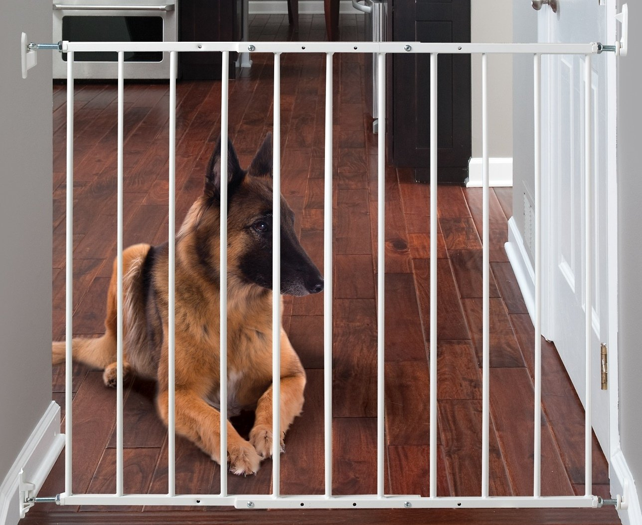 Kidco Command Pet Products Safeway Top Of Stairs Pet Gate