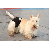 Healers Anxiety & Therapeutic Rear Dog Body Wrap, XX-Small