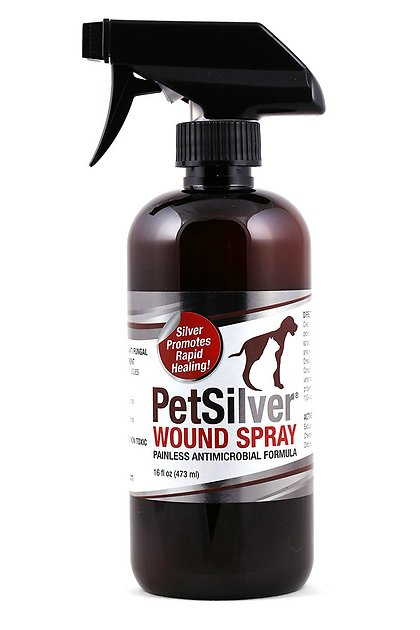 Petsilver Painless Antimicrobial Dog Amp Cat Wound Spray 16