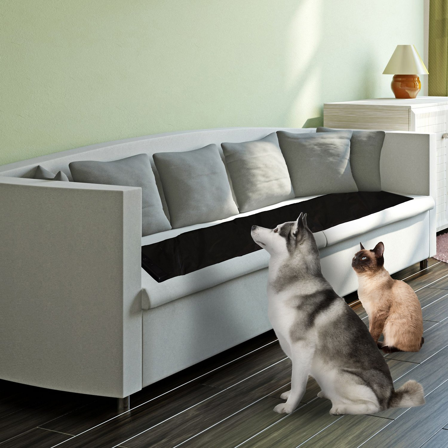 what can i put on furniture to keep cats off