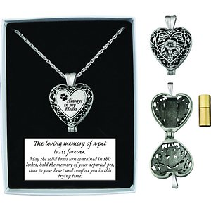 Cathedral Art Always In My Heart Memorial Ashes Locket Necklace