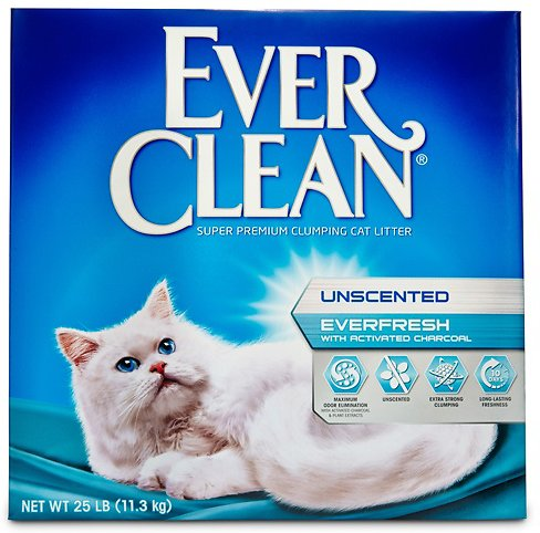 Ever Clean Everfresh With Activated Charcoal Unscented. Advertise My Business For Free Online. Long Distance Movers Seattle. Cadence Bank Credit Card Insurance Houston Tx. Template For Email Marketing. Detroit Chrysler Dealers Metro Bathroom Tiles. How To Find A Malpractice Lawyer. Event Planning Certificate Program Online. Www English Online Org Free Marketing Classes