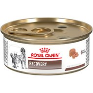 Royal Canin Veterinary Diet Recovery RS Canned Dog & Cat Food, 5.8-oz, case of 24