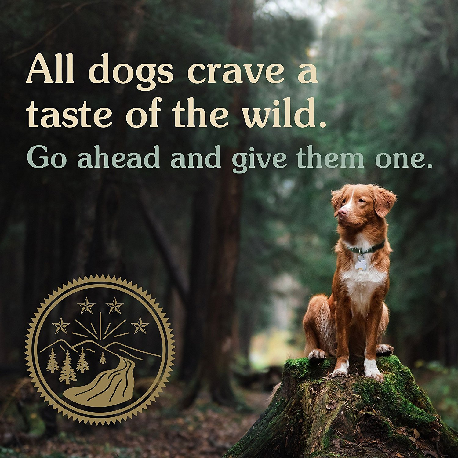 Taste of the wild pacific stream puppy formula grain free dry dog video nvjuhfo Gallery
