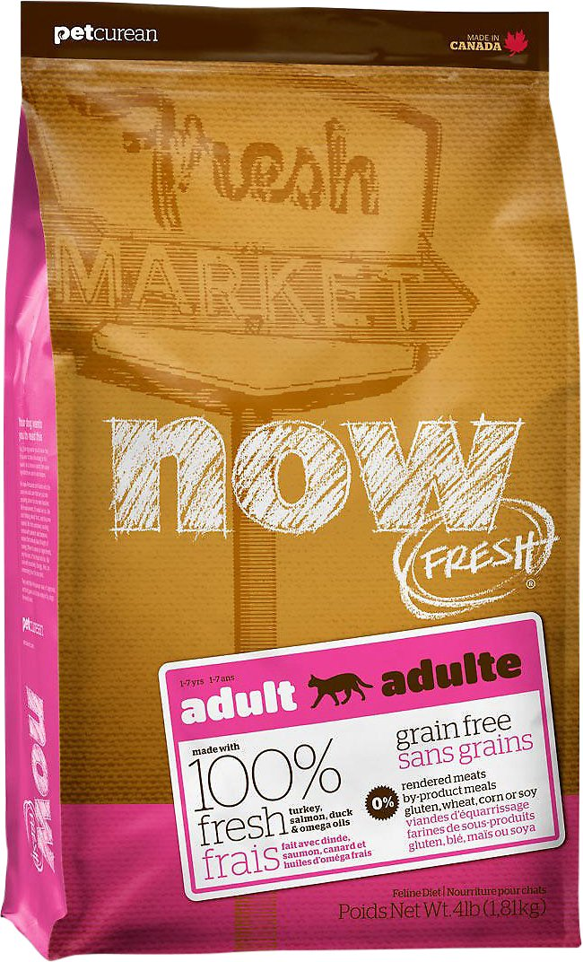 Now Fresh Grain Free Fish Adult Recipe Cat Food Lb