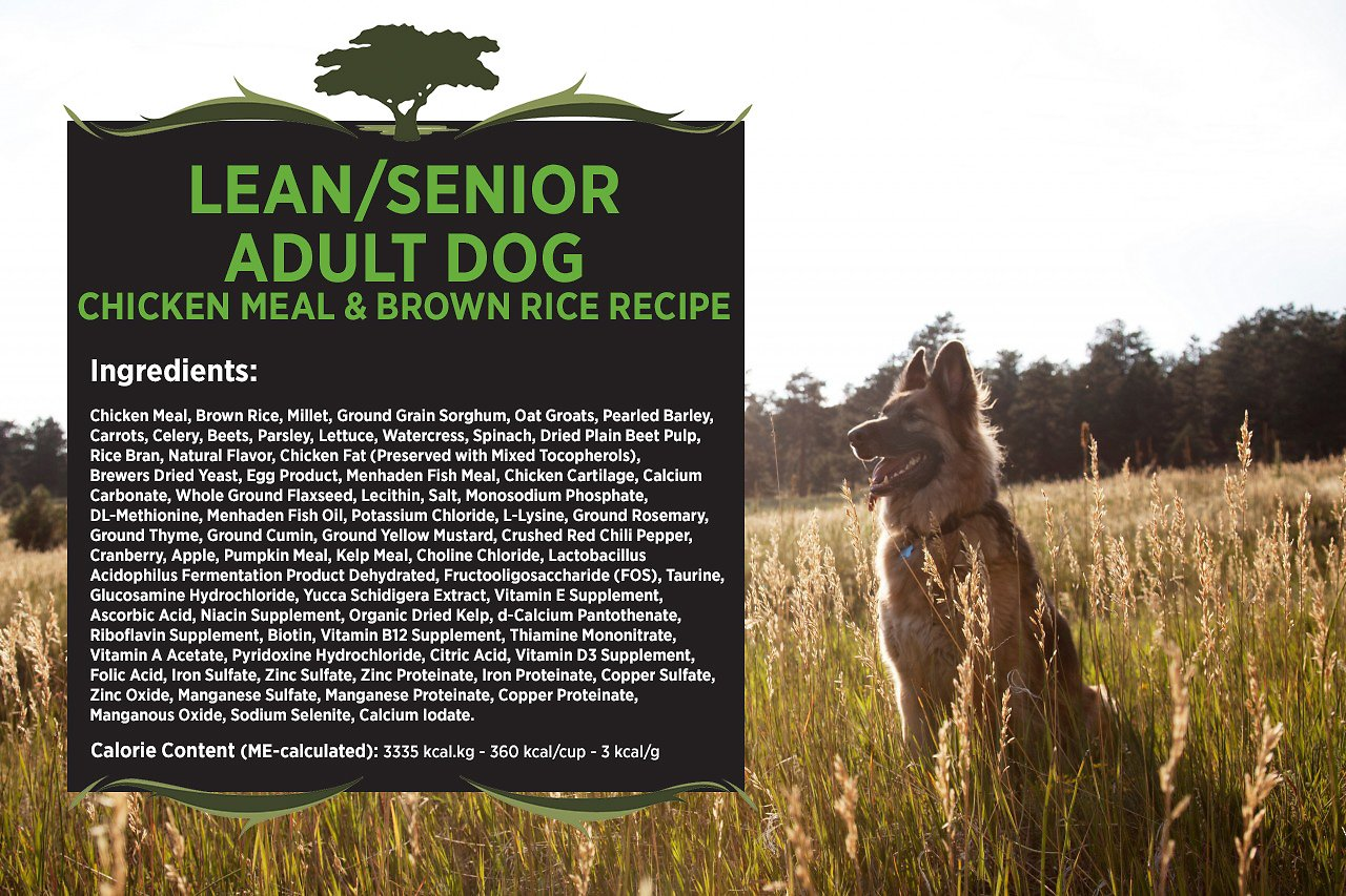 Blackwood Chicken Meal Rice Recipe Lean Dry Cat Food