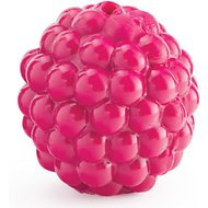 Planet Dog Orbee-Tuff Raspberry with Treat Spot Dog Toy