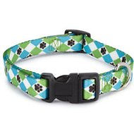 Casual Canine Pooch Pattern Dog Collar, Blue Argyle, Medium