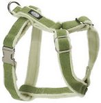 Leashes & Collars - Harnesses
