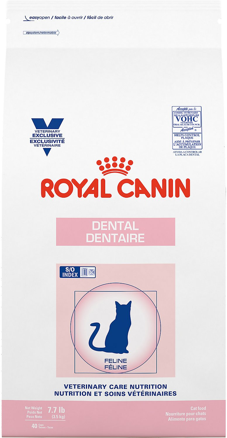 dental diet dry food for cats